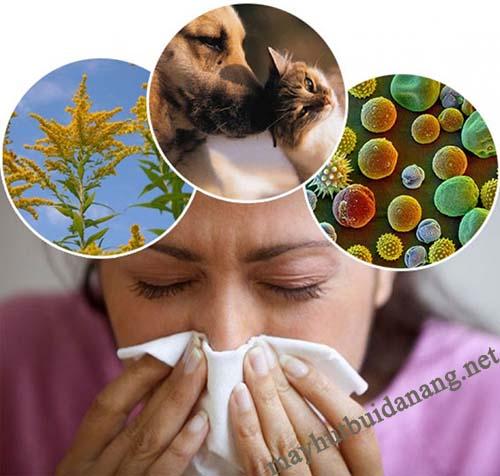 Bụi bẩn ảnh hưởng đến sức khỏe con người.