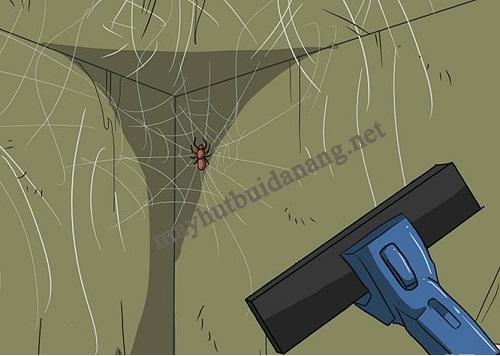 Có thể sử dụng máy hút bụi công nghiệp để tiêu diệt côn trùng gây hại