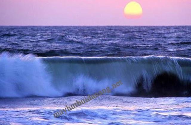 Những đặc điểm trong ngày của dòng thủy triều là gì?