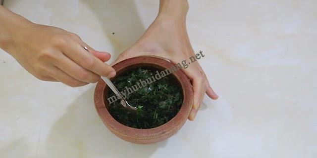 Hỗn hợp lá đinh lăng tươi và muối hột là cách chữa mụn tiện lợi