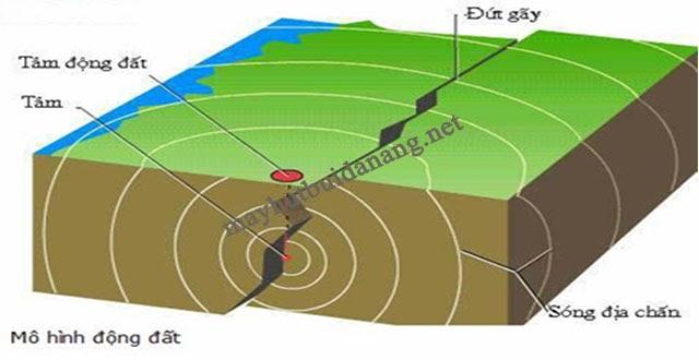 Nguyên nhân đầu tiên hình thành sóng thần là do động đất dưới lòng biển
