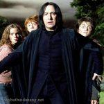 Top các nhân vật trong Harry Potter được yêu thích nhất