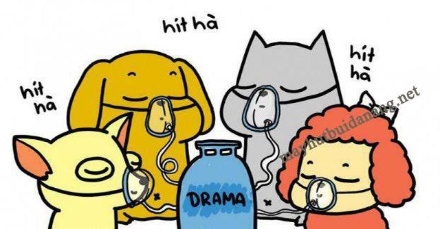 Hít drama là gì?