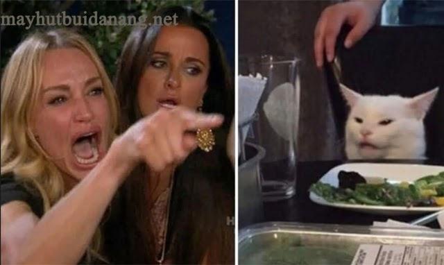 """Meme """"Cô gái mắng mèo"""" cực kỳ nổi tiếng"""