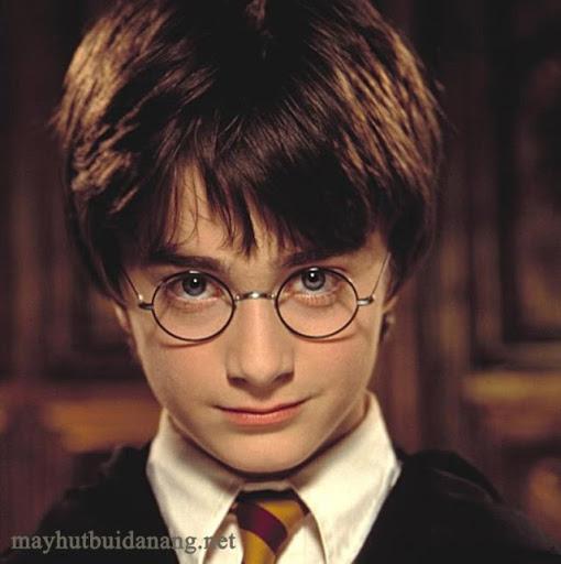 """Harry là nhân vật đem lại """"linh hồn"""" cho series Harry Potter"""