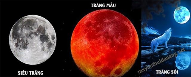 Hiện tượng siêu trăng thường xảy ra ngay sau hiện tượng trăng máu